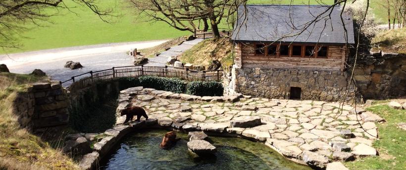 Weekendtip : Slapen-met-de-beren bij de Grotten Van Han