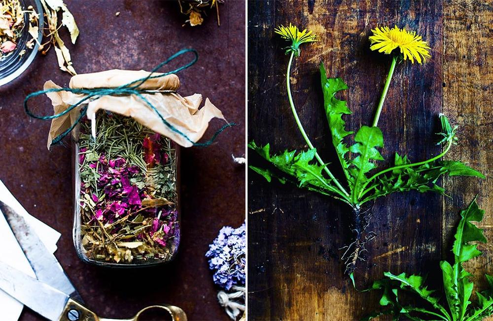 Van de tuin recht naar je bord: maak kennis met The Plant Pharmacy