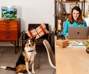 Een biOrb aquarium van Oase: een knap accessoire voor je home office
