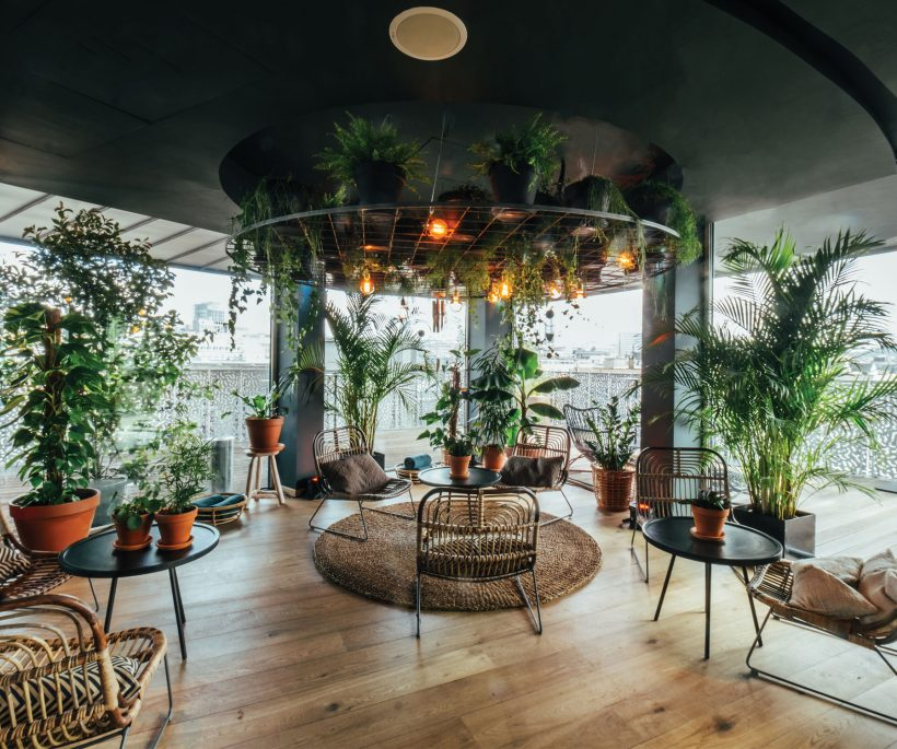 The trend experience: urban jungle hotspots
