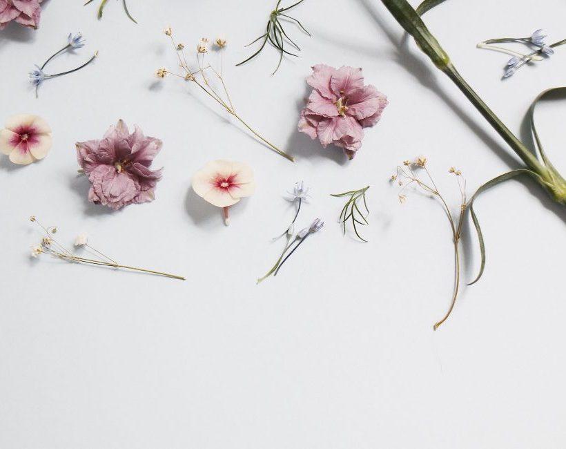 Hoe pas je de trend van gedroogde bloemen toe?