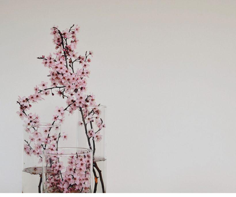 Zo decoreer je met minimalistische bloemen