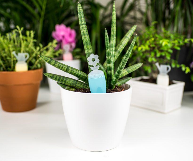 Test: slim je planten bewateren