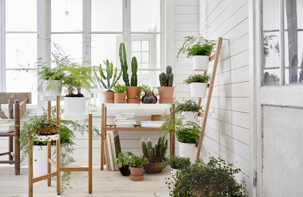 De beste adressen voor een design plantenbak