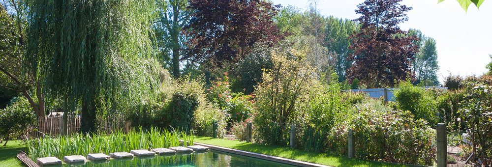 Trend: biobaden en zwemvijvers in de tuin