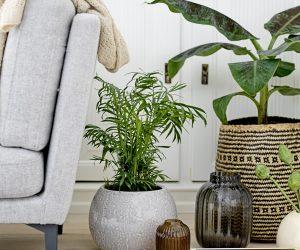 10 stijlvolle bloempotten voor je najaarsinterieur