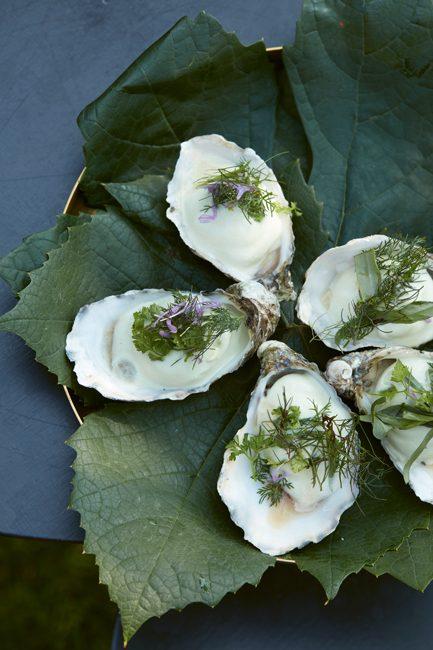oesters-kookboek-sharing-benoit-dewitte-welkin-meraki