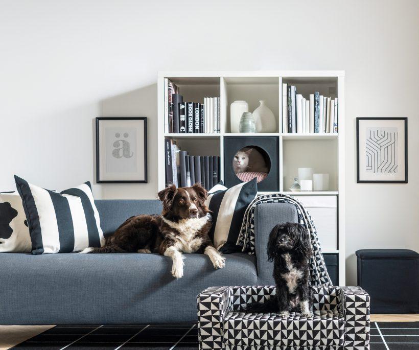 Dierendeco: interview met Inma Bermúdez voor IKEA