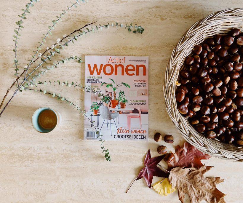 5 redenen om het novembernummer van Actief Wonen te lezen