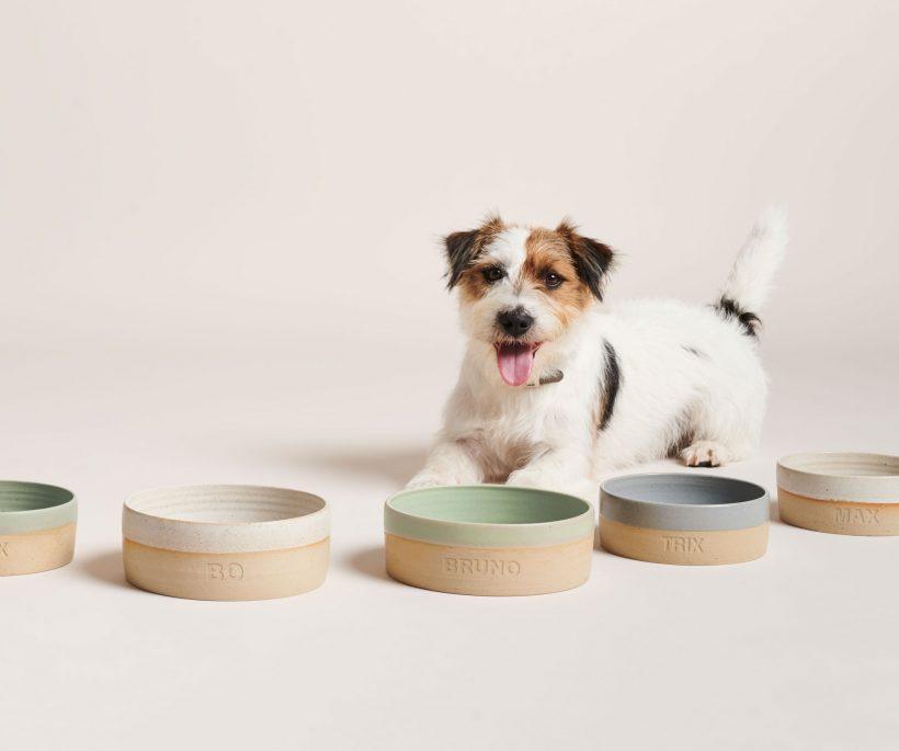 3 x duurzame designlabels voor onze dierbare huisdieren